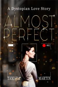 almostperfecteb[5403]ebook