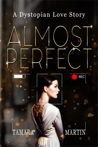 almostperfecteb[5403]ebook